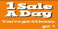 1 Sale A Day